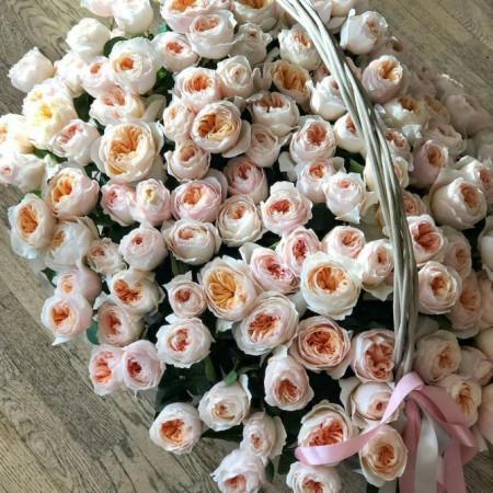 125 шикарных пионовидных роз в корзине
