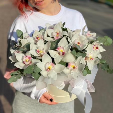 Композиция Орхидеи Цимбидиум