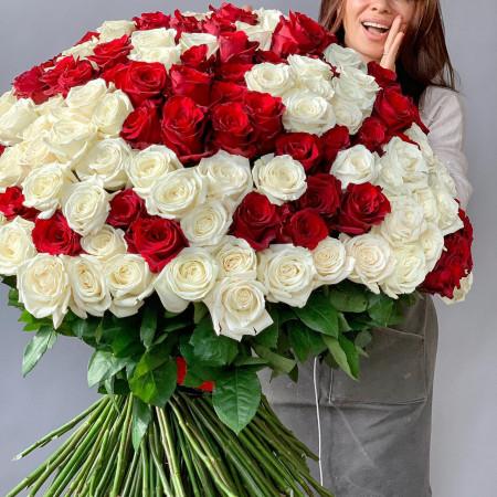 250 шикарных роз крупным бутоном